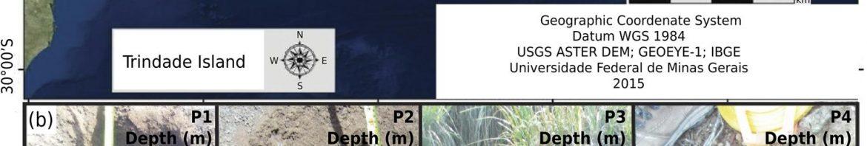 A. C. C. Mateus et al., «Non-allophanic Andosols of Trindade Island, south Atlantic: a new soil order in Brazil», Revista Brasileira de Ciência do Solo, vol. 44, 2020